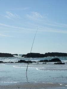 A Cana de Pesca, 2010
