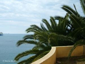 Palmeira no Recanto, 2010
