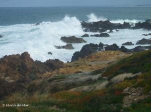 Mar do Norte, 2011