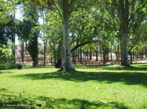 Estar de Pé no Parque, 2012