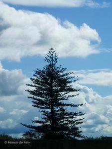 Nuvens no Azul, 2012