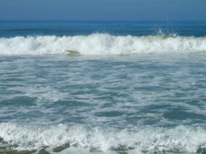 A Praia e a Prancha, 2012