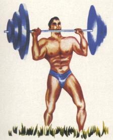 Músculos Predilecta