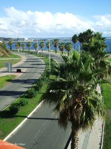 Caminhos, 2012