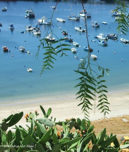 Praia, barcos e vegetação, 2013