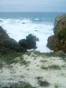 Caminho para o Mar, 2013