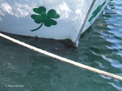 Barco com trevo