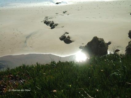 Reflexo na Areia Perdida, 2014