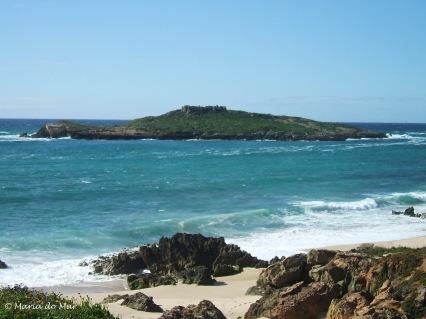 Ilha, 2014