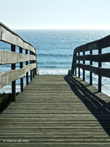 Ponte para o Mar, 2014