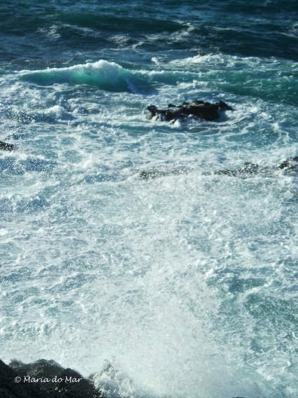 Mar Saplicado de Vento, 2014