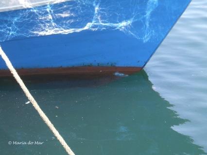 Barco-Azul-Cintilante
