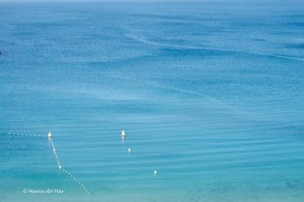 Mar da Maravilhosa, 2013