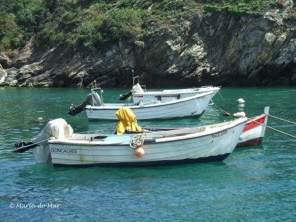 Barcos de Porto Côvo, 2015