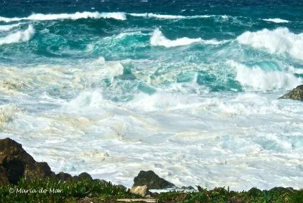 Mar Enfurecido-Espumado, 2015