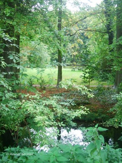 Um Olhar de Soslaio para o Bosque, 2015