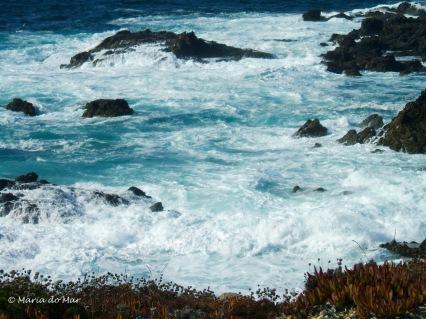 Retalhos de Tule no Mar Irado, 2013