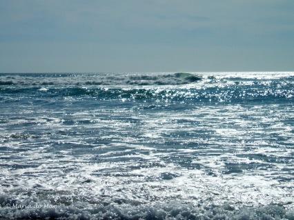 Mar de Prata, 2014