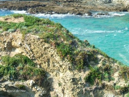 Penedos e Mar Alentejanos, 2010