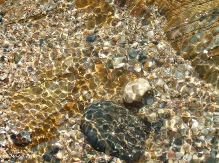 Tesouros marinhos, 2014