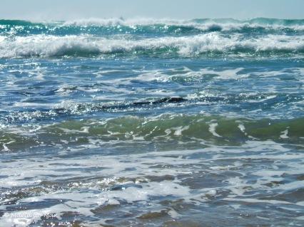 voando-nas-ondas-2014