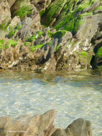 recortes-marinhos-2013