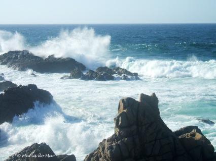 a-festa-das-ondas-2012