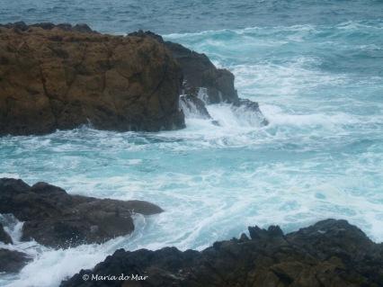 mar-baco-2013