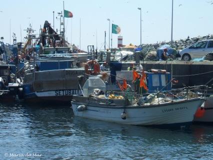 a-labuta-da-pesca-2012