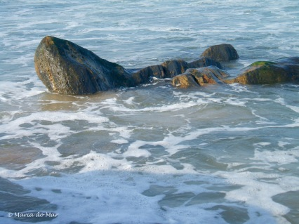 o-focinho-de-pedra-2013